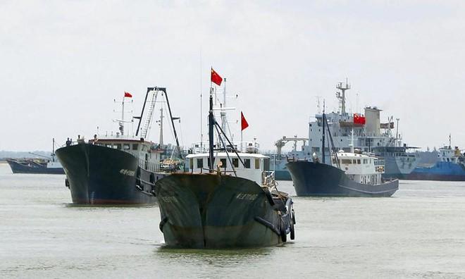 Từ bãi Tư Chính nhận diện lực lượng dân quân biển Trung Quốc - Ảnh 1.