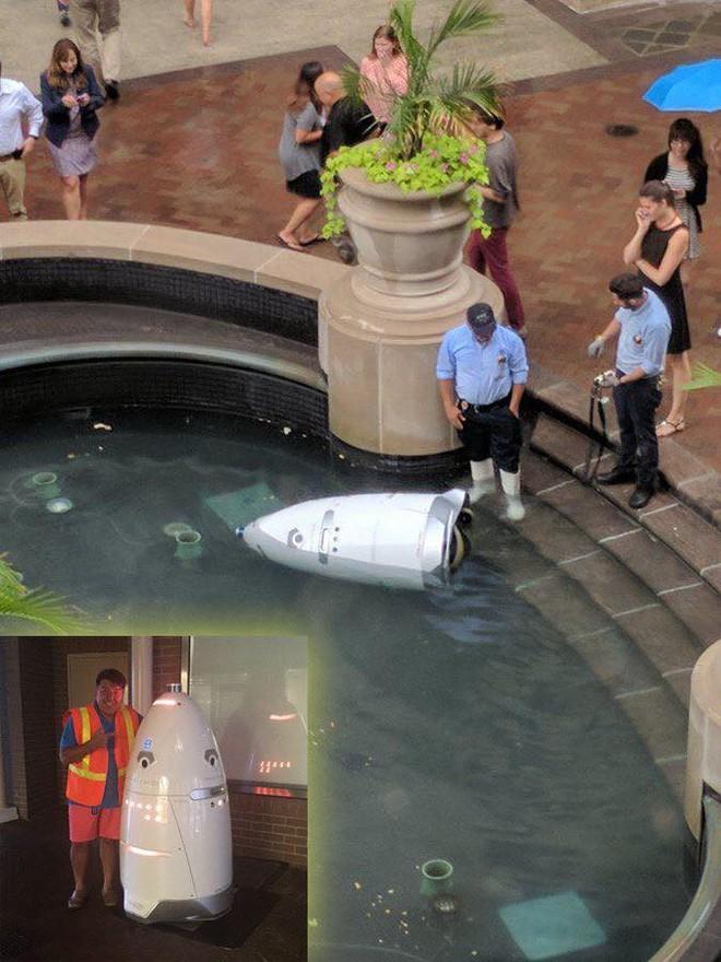 Chuyện về chú robot an ninh gieo mình tự tử trong hồ nước khi nhận ra bản thân chỉ là món đồ giúp việc khiến dân mạng tranh cãi, rốt cuộc thật hư ra sao? - Ảnh 1.