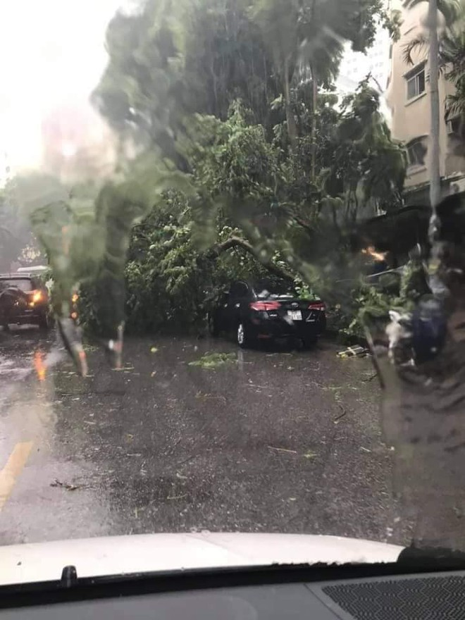 [Video] Mưa giông bất ngờ đổ ập, người dân chung cư bị kéo bật khỏi cửa, cây gãy đè trúng ô tô ở Hà Nội - Ảnh 2.
