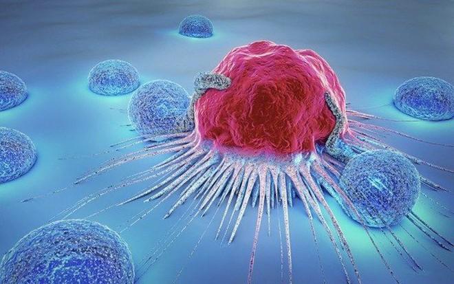 BS nhắc bệnh nhân ung thư: Muốn chiến thắng được bệnh, 70% phụ thuộc vào bí quyết này - Ảnh 1.