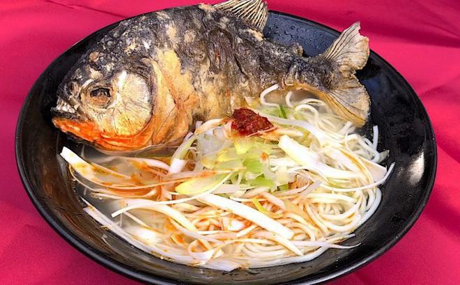 Khi mì Ramen kết hợp với loài cá ăn thịt Piranha: Giá 650k/bát, mỗi ngày chỉ bán 100 bát