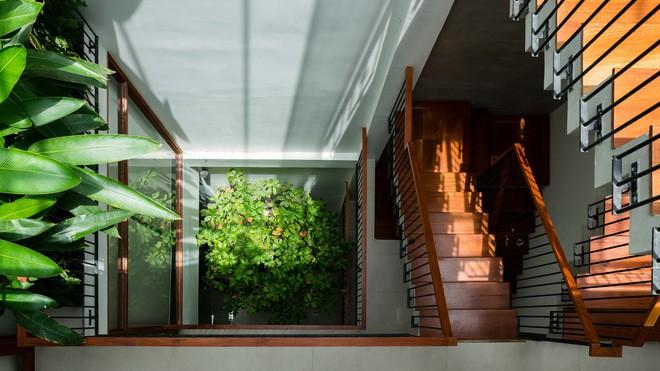 Thêm một công trình kiến trúc của Việt Nam được giới thiệu trên báo Mỹ - Ảnh 8.