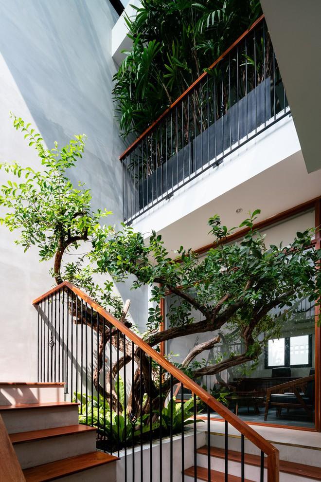 Thêm một công trình kiến trúc của Việt Nam được giới thiệu trên báo Mỹ - Ảnh 12.