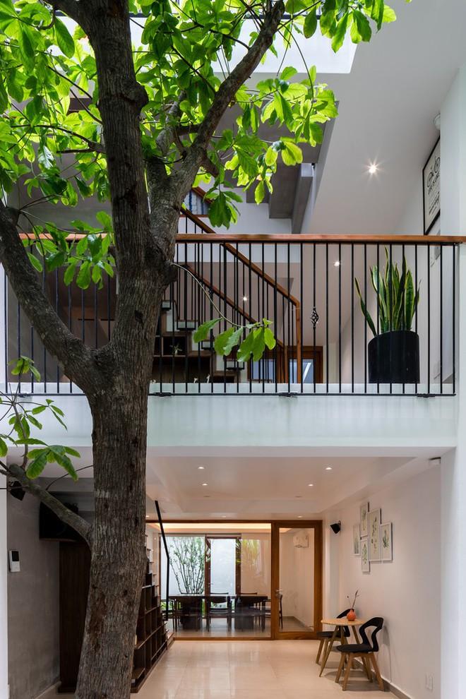 Thêm một công trình kiến trúc của Việt Nam được giới thiệu trên báo Mỹ - Ảnh 13.