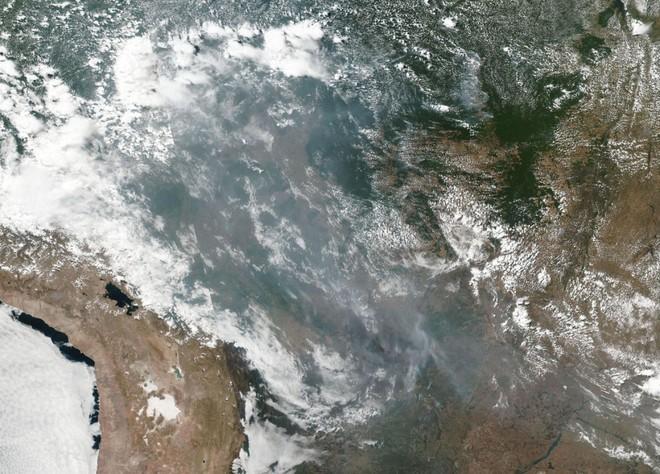 Ám ảnh cảnh rừng mưa Amazon chìm trong bão lửa - Ảnh 1.