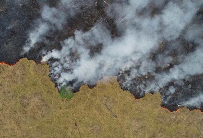 Ám ảnh cảnh rừng mưa Amazon chìm trong bão lửa - Ảnh 11.