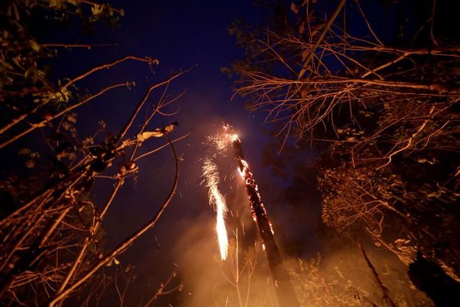 Ám ảnh cảnh rừng mưa Amazon chìm trong bão lửa - Ảnh 6.