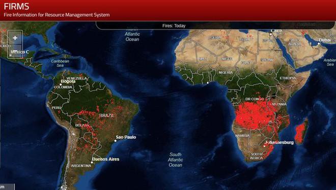 Bloomberg: Cháy rừng khủng khiếp ở Brazil cũng chỉ xếp thứ 3 về số lượng - Ảnh 3.