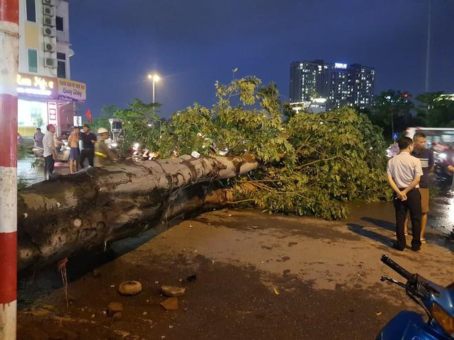 Mưa giông dữ dội từ cuối chiều ở Hà Nội, 1 nam thanh niên bị cây si đổ trúng tử vong - Ảnh 13.