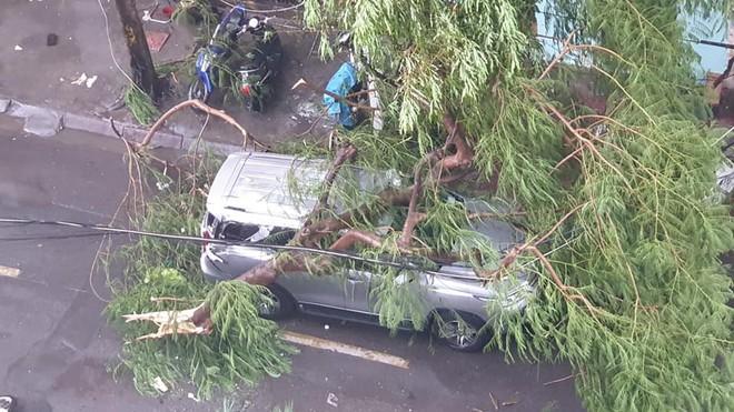 Mưa giông dữ dội từ cuối chiều ở Hà Nội, 1 nam thanh niên bị cây si đổ trúng tử vong - Ảnh 24.