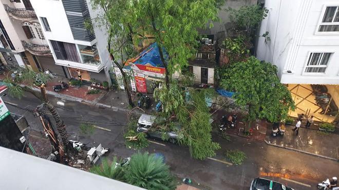 Mưa giông dữ dội từ cuối chiều ở Hà Nội, 1 nam thanh niên bị cây si đổ trúng tử vong - Ảnh 25.