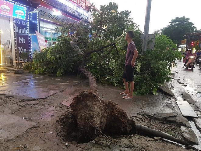 Mưa giông dữ dội từ cuối chiều ở Hà Nội, 1 nam thanh niên bị cây si đổ trúng tử vong - Ảnh 28.