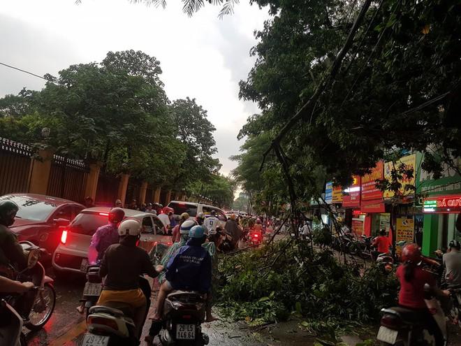 Mưa giông dữ dội từ cuối chiều ở Hà Nội, 1 nam thanh niên bị cây si đổ trúng tử vong - Ảnh 31.