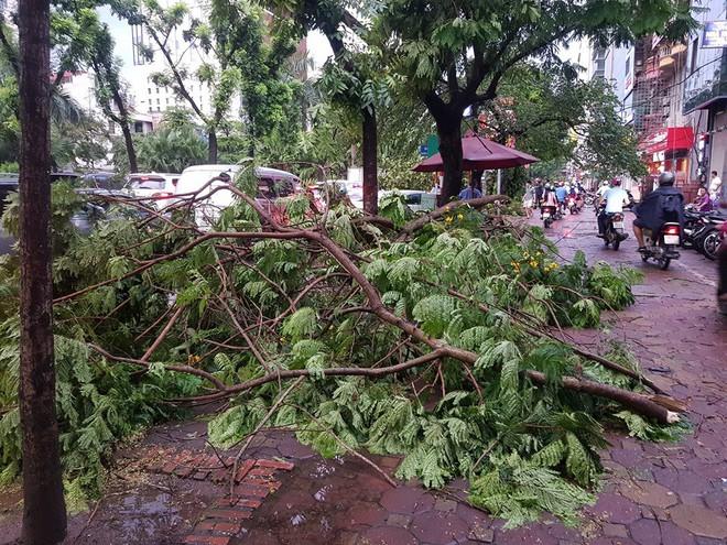 Mưa giông dữ dội từ cuối chiều ở Hà Nội, 1 nam thanh niên bị cây si đổ trúng tử vong - Ảnh 27.