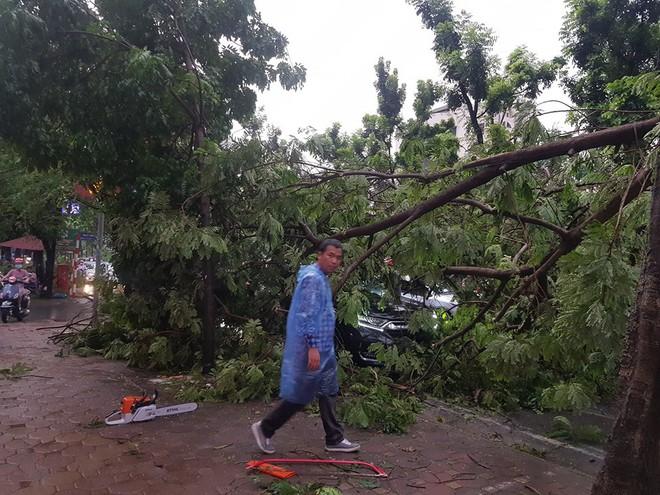 Mưa giông dữ dội từ cuối chiều ở Hà Nội, 1 nam thanh niên bị cây si đổ trúng tử vong - Ảnh 21.