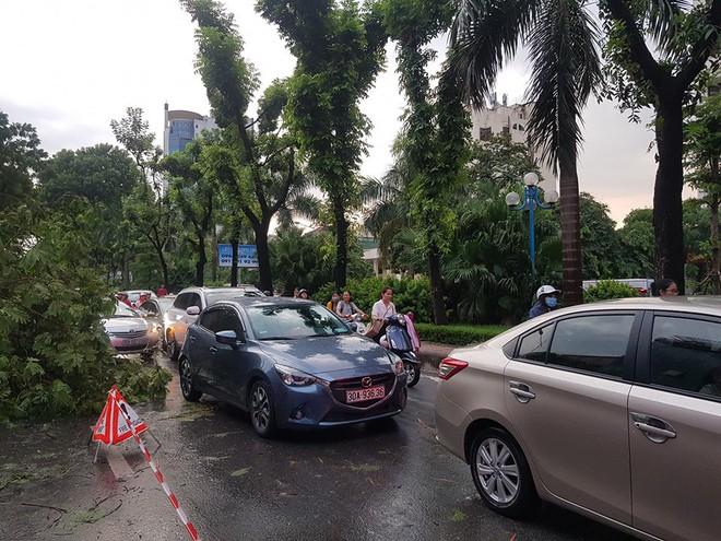 Mưa giông dữ dội từ cuối chiều ở Hà Nội, 1 nam thanh niên bị cây si đổ trúng tử vong - Ảnh 19.