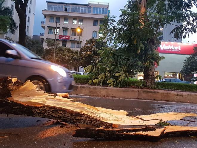Mưa giông dữ dội từ cuối chiều ở Hà Nội, 1 nam thanh niên bị cây si đổ trúng tử vong - Ảnh 17.