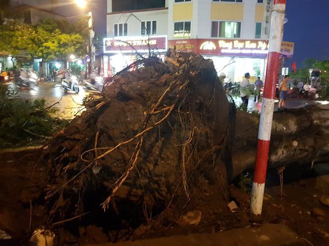 Mưa giông dữ dội từ cuối chiều ở Hà Nội, 1 nam thanh niên bị cây si đổ trúng tử vong - Ảnh 14.