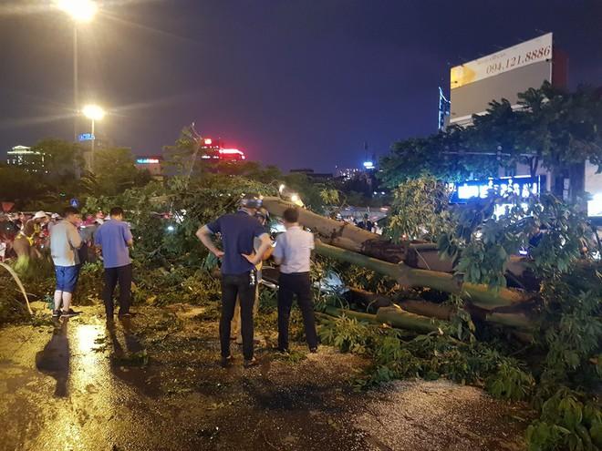 Mưa giông dữ dội từ cuối chiều ở Hà Nội, 1 nam thanh niên bị cây si đổ trúng tử vong - Ảnh 11.