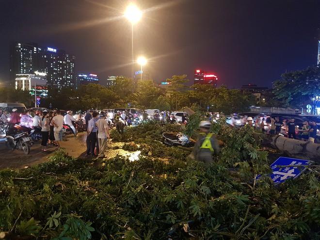 Mưa giông dữ dội từ cuối chiều ở Hà Nội, 1 nam thanh niên bị cây si đổ trúng tử vong - Ảnh 12.