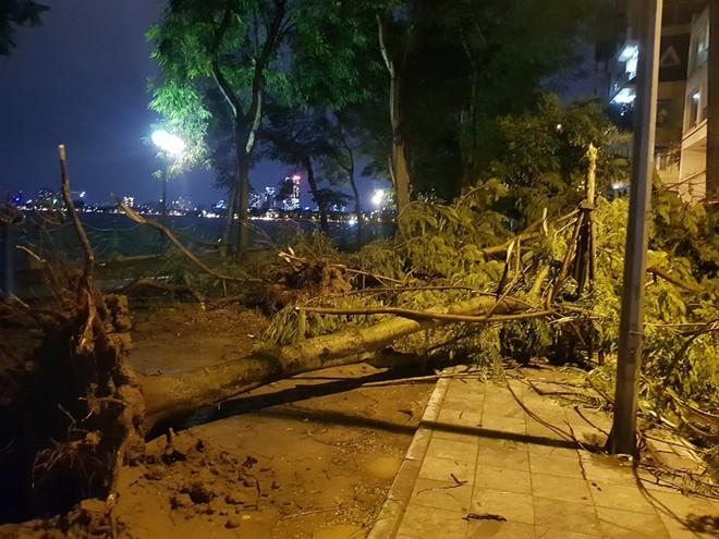 Mưa giông dữ dội từ cuối chiều ở Hà Nội, 1 nam thanh niên bị cây si đổ trúng tử vong - Ảnh 9.