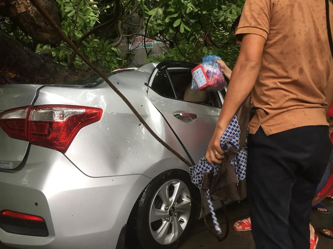 Cây đổ hàng loạt, đè trúng ô tô, hiện trường tan hoang ở Hà Nội và các tỉnh phía Bắc khi bão số 3 quét qua - Ảnh 3.