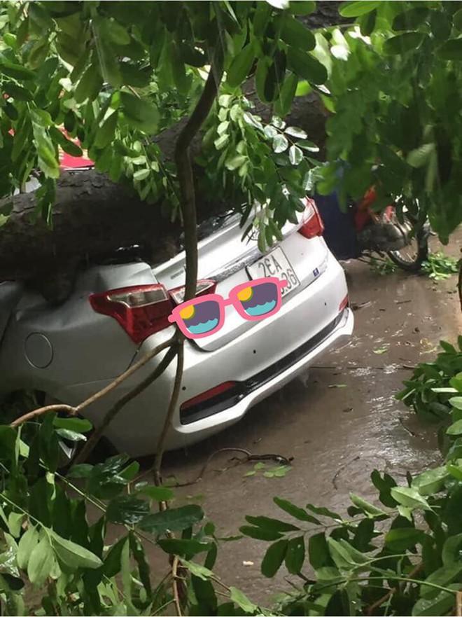 Cây đổ hàng loạt, đè trúng ô tô, hiện trường tan hoang ở Hà Nội và các tỉnh phía Bắc khi bão số 3 quét qua - Ảnh 4.