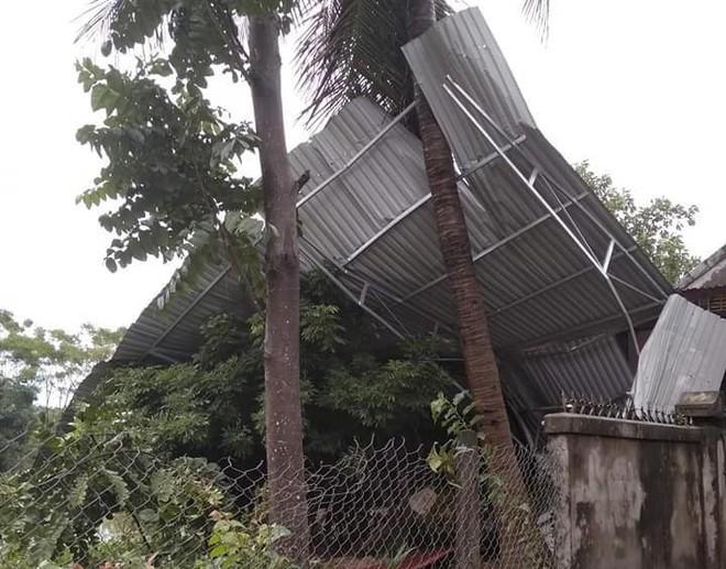 Hàng loạt cây đổ, nhà cửa tan hoang sau khi bão số 4 đổ bộ vào Nghệ An - Hà Tĩnh - Ảnh 9.