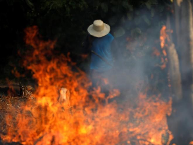 GĐ truyền thông Đài quan sát khí hậu Brazil trả lời báo Việt Nam: Tổng thống chỉ đang dùng thuốc giảm đau mà thôi! - Ảnh 6.