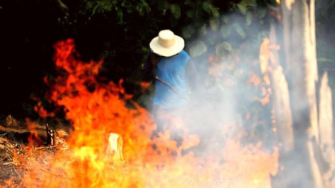 Rừng Amazon cháy thảm khốc, oxy của Trái Đất đang cạn kiệt: Quan niệm này hoàn toàn sai lầm - Vì sao? - Ảnh 4.