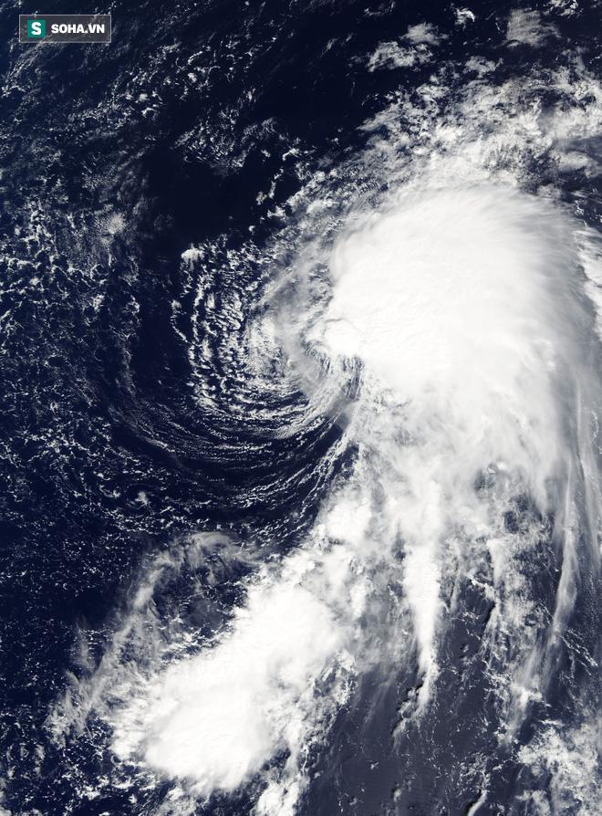 Biển Đông liên tiếp xuất hiện bão mạnh, dự báo sẽ có bão đổ bộ, khu vực nào ảnh hưởng nặng nhất? - Ảnh 3.