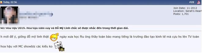 Cư dân mạng kinh ngạc trước sự giống nhau của tân Hoa hậu Thế giới Việt Nam và Đỗ Mỹ Linh - Ảnh 7.