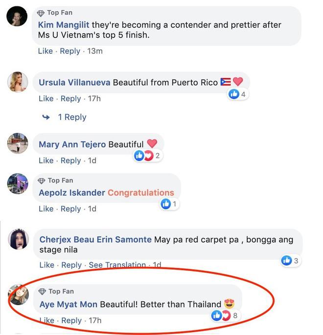 Dân mạng quốc tế nói gì về Tân Hoa hậu Thế giới Việt Nam Lương Thùy Linh? - Ảnh 6.