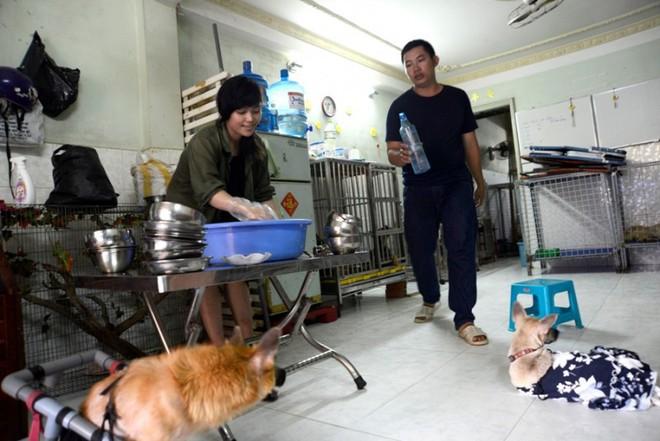 Trấn Thành xúc động trước cô gái hi sinh tuổi trẻ, dám đi xe máy 8 tiếng để cứu những chú chó bị bỏ rơi - Ảnh 3.
