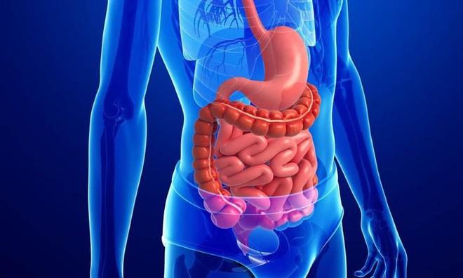 Chuyên gia hướng dẫn kỹ thuật siêu thanh lọc: Thải độc 6 tháng/lần để loại bỏ bệnh tật - Ảnh 2.