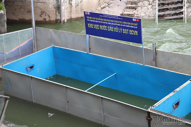 Chuyên gia Nhật sẽ tắm trên sông Tô Lịch - Ảnh 11.