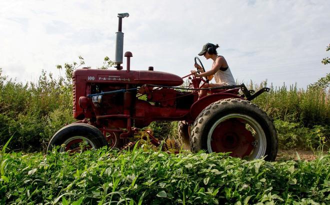 """TQ đi nước cờ táo bạo chưa từng có: Mất khách hàng sộp, nông dân Mỹ đã """"đau"""" nay càng thêm """"khổ"""""""