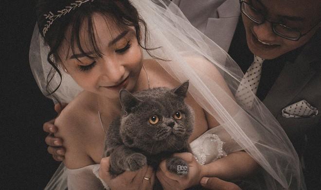 Cô dâu ôm kẻ thứ 3 chụp ảnh cưới, sự thật do nữ chính tiết lộ mới gây bất ngờ - Ảnh 4.