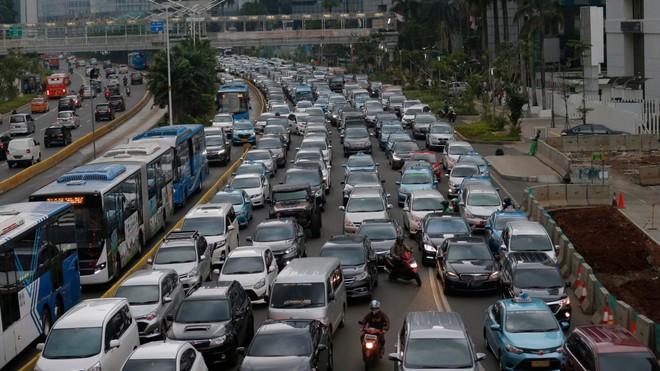 Indonesia sẽ dời thủ đô từ Jakarta sang đảo Borneo  - Ảnh 1.