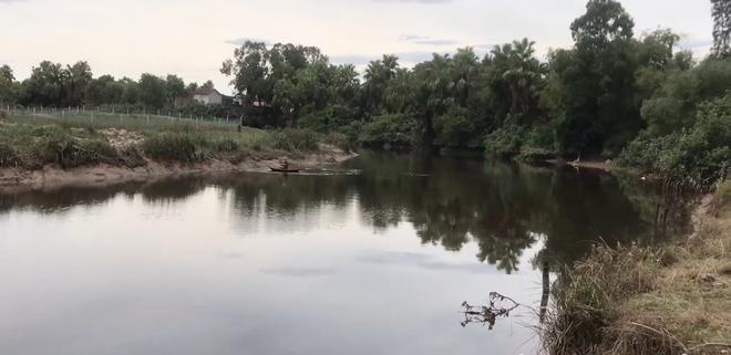 Dân hoảng sợ khi thấy cá sấu khủng bơi trên sông, chính quyền cử người đi bắt - Ảnh 1.