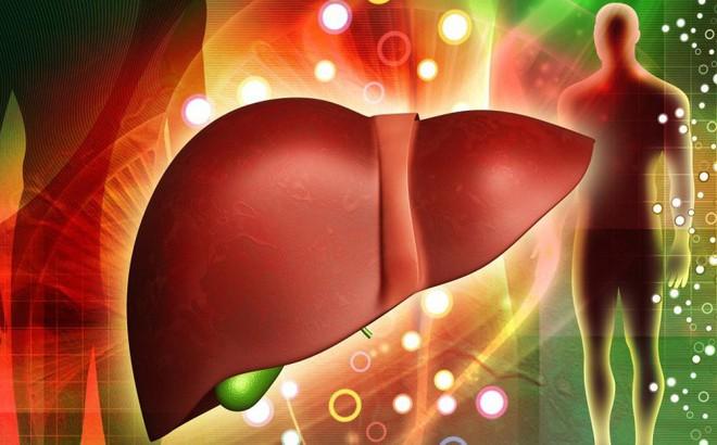 Dấu hiệu gan bị nhiễm độc và đối tượng cần thải độc gan