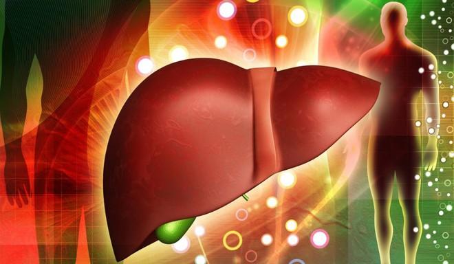 Dấu hiệu gan bị nhiễm độc và đối tượng cần thải độc gan - Ảnh 1.