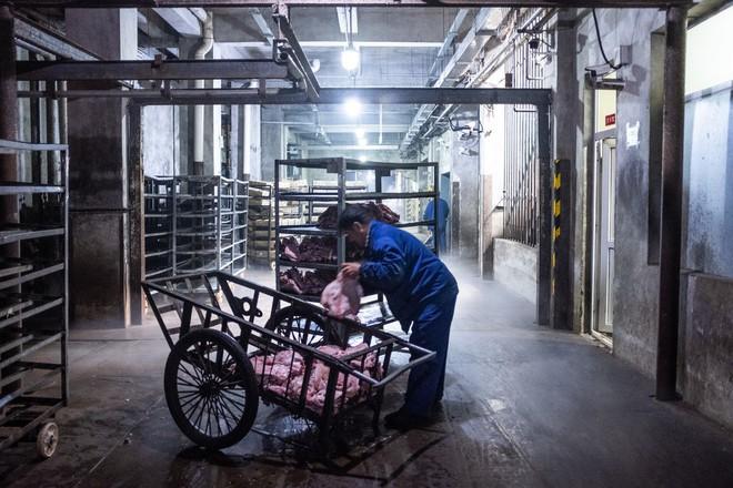 TQ vật lộn với khủng hoảng quốc gia: Thiếu lợn, có người dân chỉ được mua 50 gram thịt mỗi ngày - ảnh 2