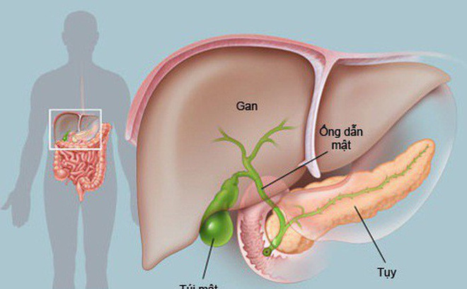 Tại sao ung thư tuyến tụy rất nguy hiểm?