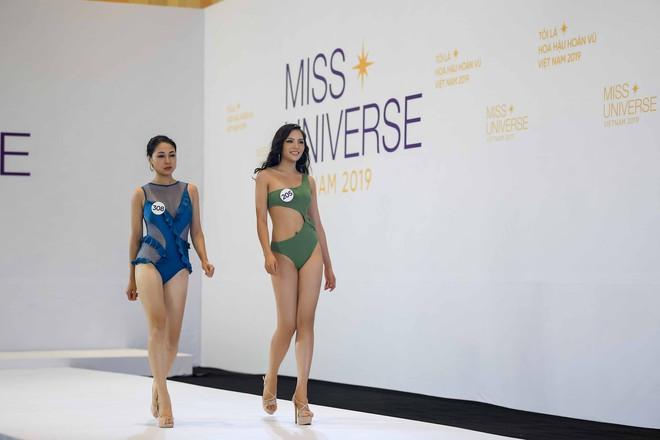 Dàn thí sinh vòng sơ khảo phía Bắc cuộc thi Hoa hậu Hoàn vũ Việt Nam 2019 diện bikini trình diễn vô cùng tự tin - Ảnh 6.