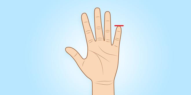 Người sở hữu ngón tay út này thường có tố chất của một nhà lãnh đạo xuất chúng - Ảnh 2.