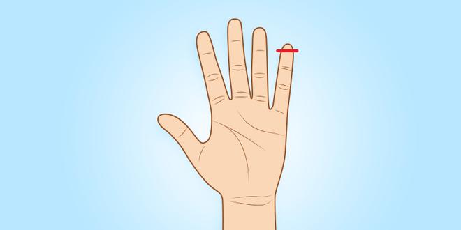 Người sở hữu ngón tay út này thường có tố chất của một nhà lãnh đạo xuất chúng - Ảnh 4.