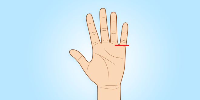 Người sở hữu ngón tay út này thường có tố chất của một nhà lãnh đạo xuất chúng - Ảnh 5.