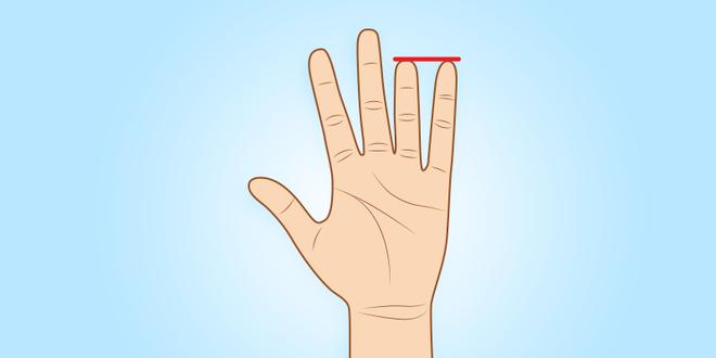 Người sở hữu ngón tay út này thường có tố chất của một nhà lãnh đạo xuất chúng - Ảnh 6.
