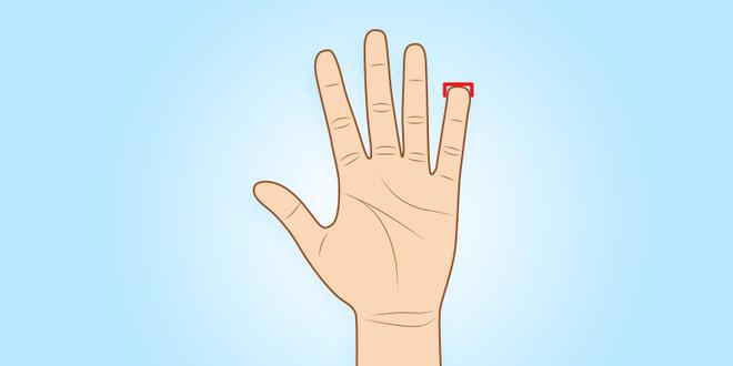Người sở hữu ngón tay út này thường có tố chất của một nhà lãnh đạo xuất chúng - Ảnh 7.